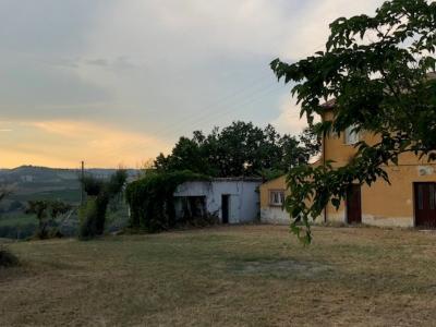 Terreno Agricolo in Vendita a Città Sant'Angelo