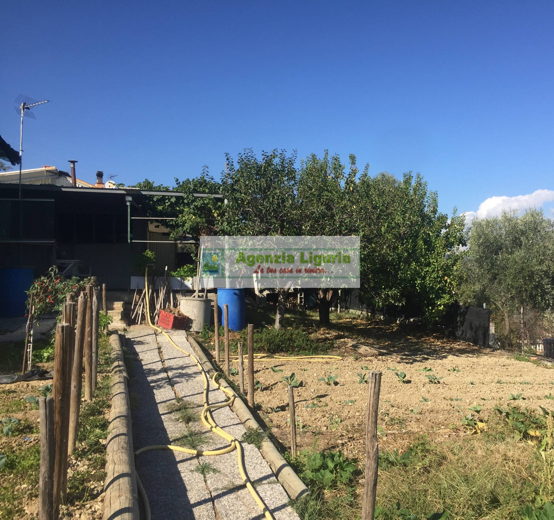 Terreno Agricolo in vendita a San Biagio della Cima, 9999 locali, prezzo € 69.000 | CambioCasa.it