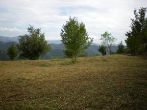building land for Sale to Pigna