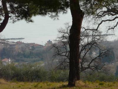 Terreno edificabile in Vendita a Massignano
