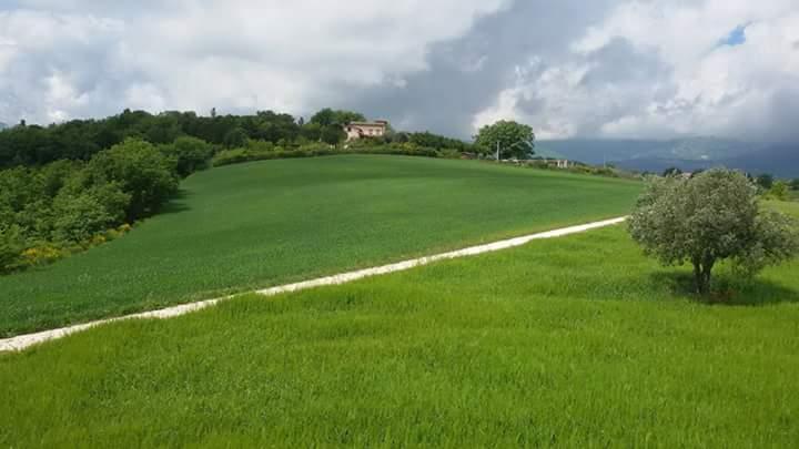 Terreno Edificabile Residenziale in vendita a Pescara, 9999 locali, prezzo € 50.000 | Cambio Casa.it