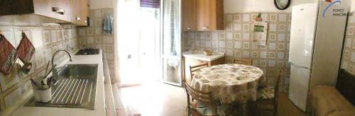 Appartamento in Affitto a Cogorno