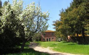 Vai alla scheda: Rustico / Casale / Corte Vendita - Magliano in Toscana (GR) - Codice 14064