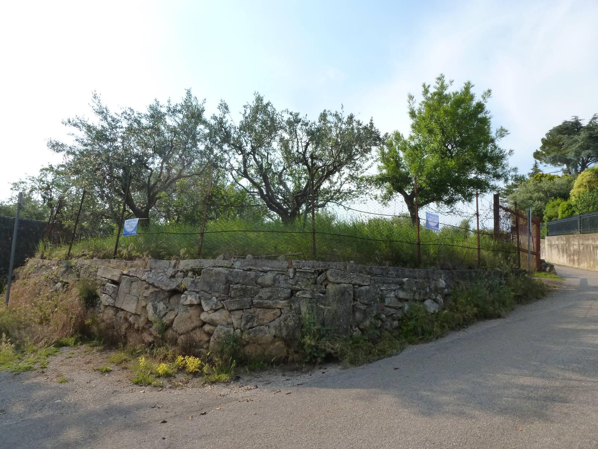 Terreno VERONA vendita  Quinzano  Immobiliare Trento di Fozzato Gianni