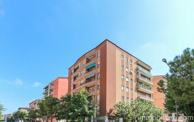 Vai alla scheda: Appartamento Vendita - Verona (VR)   Ponte Catena - Codice -GF73.