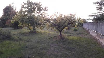 Terreno Agricolo in Vendita<br>a Chieti
