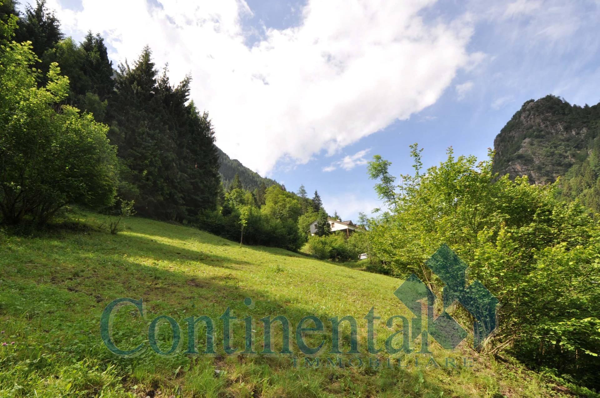 Terreno Edificabile Residenziale in vendita a Isola di Fondra, 9999 locali, prezzo € 32.000 | PortaleAgenzieImmobiliari.it
