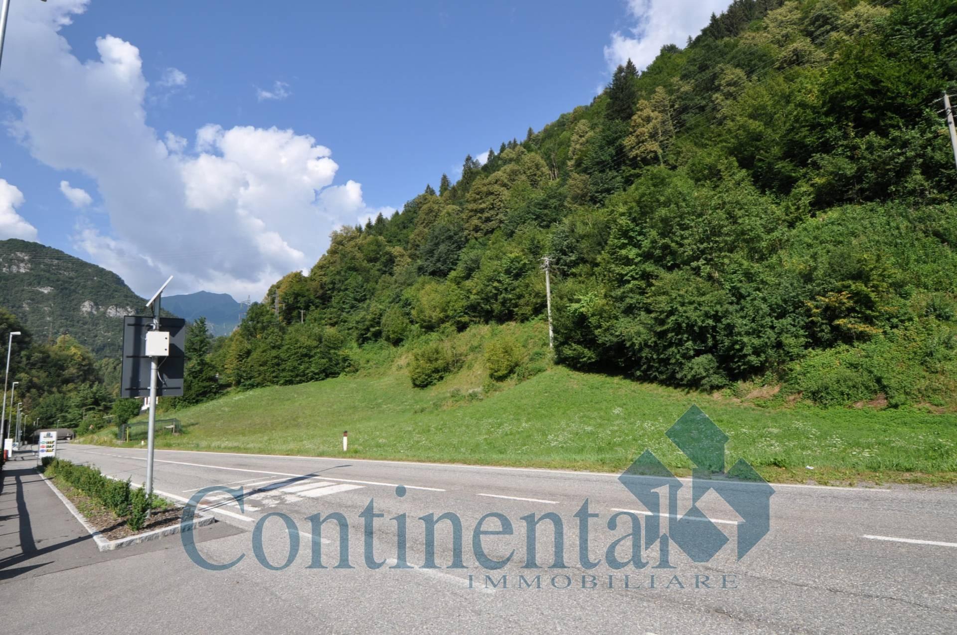 Terreno Edificabile Residenziale in vendita a Olmo al Brembo, 9999 locali, prezzo € 20.000 | PortaleAgenzieImmobiliari.it