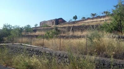 Terreno Agricolo in Vendita a Santa Maria di Licodia