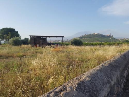 Terreno Agricolo in Vendita a Paternò