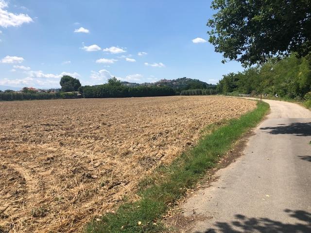 Terreno Agricolo in vendita a Spinetoli, 9999 locali, zona Zona: Pagliare, prezzo € 155.000 | CambioCasa.it