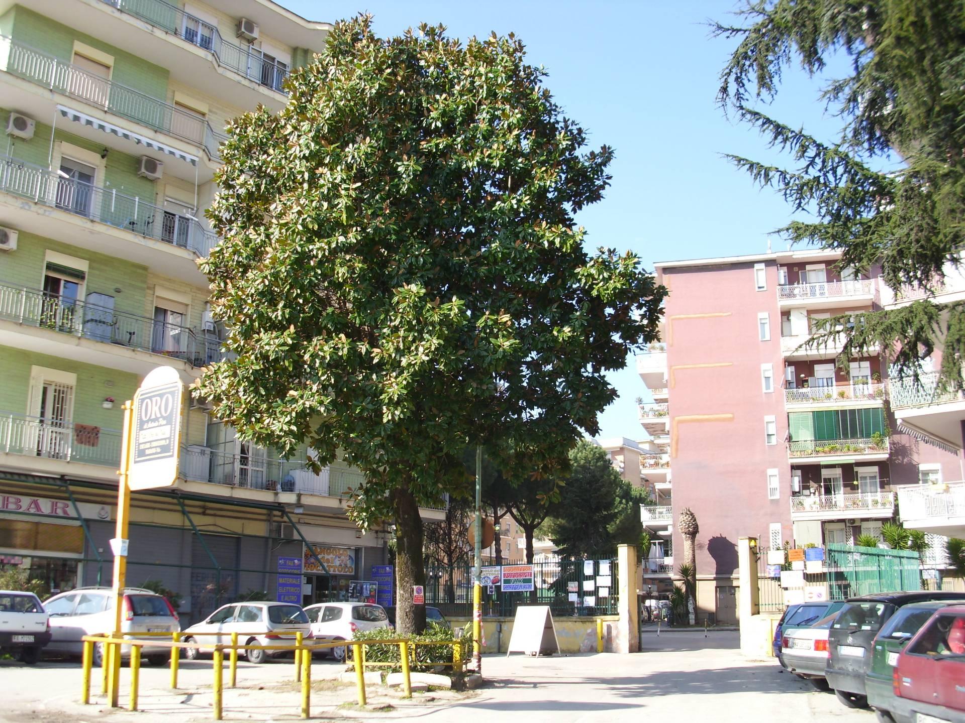APPARTAMENTO in Affitto a Marano Di Napoli (NAPOLI)
