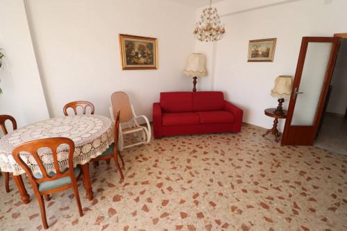 Affitto estivo in Affitto a San Benedetto del Tronto