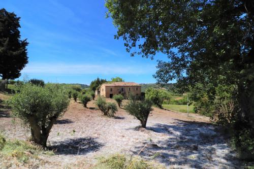 Casale colonico / Rustico in Vendita a Acquaviva Picena