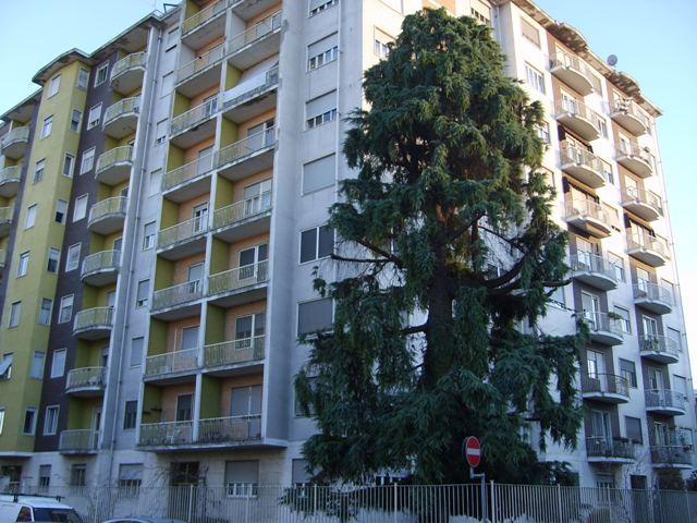 Bilocale Vercelli Via Chivasso 10