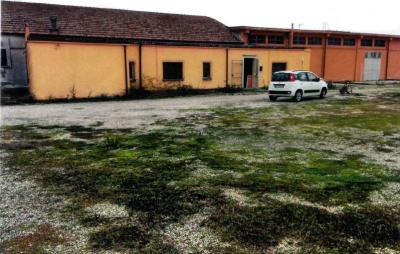 Capannone Commerciale in Affitto a Mirabello