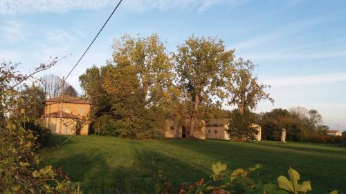 Azienda Agricola in Vendita a Ferrara