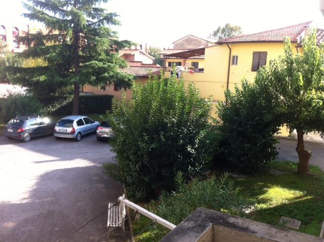 foto carosello 16264104