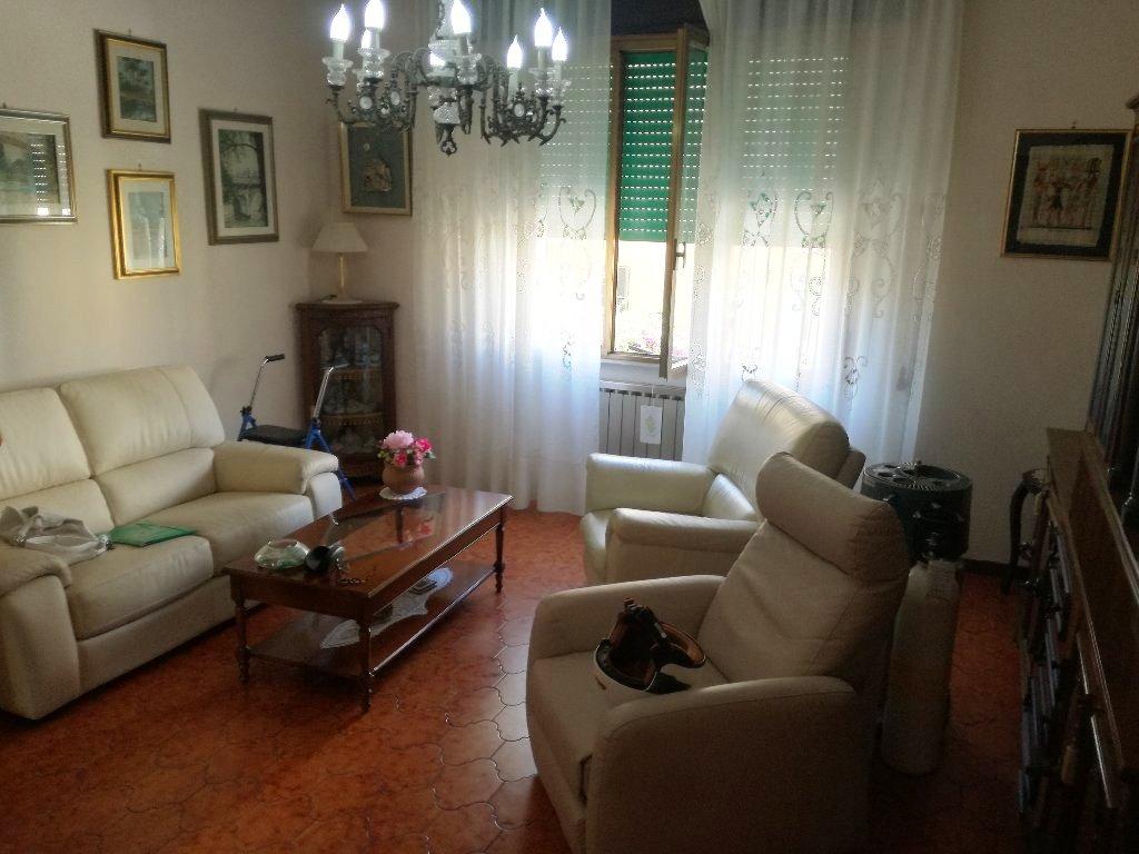 foto carosello 34555513