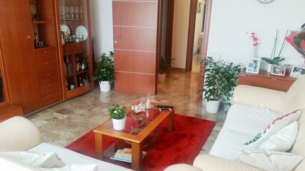 Appartamento in vendita a Navacchio, Cascina (PI)