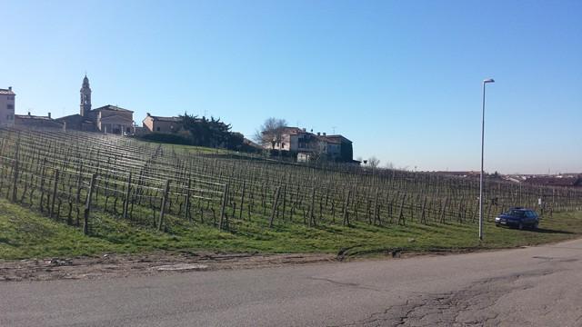 Terreno Agricolo in vendita a Soave, 9999 locali, prezzo € 240.000 | Cambio Casa.it