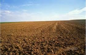 Terreno Agricolo in vendita a Belfiore, 9999 locali, Trattative riservate | CambioCasa.it