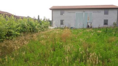 Terreno Agricolo in Vendita a Albaredo d'Adige