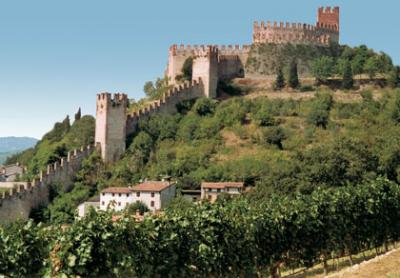 Locale commerciale in Affitto a Soave
