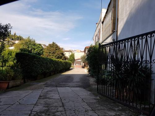 capannone artigianale/magazzino in Affitto a Monteforte d'Alpone