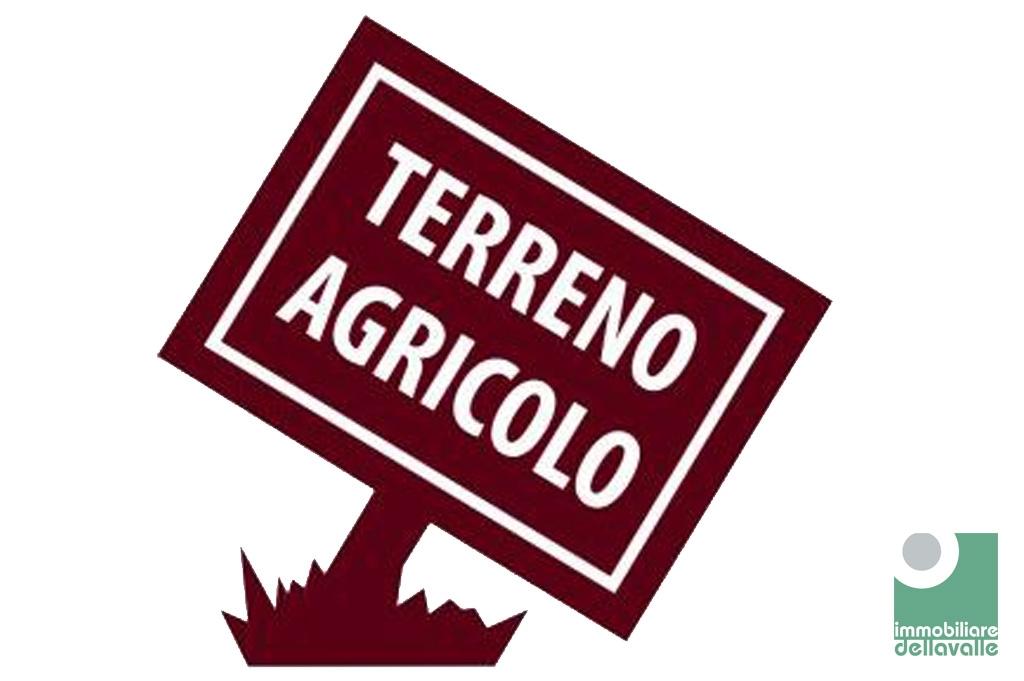 Terreno Agricolo in vendita a Oleggio, 9999 locali, prezzo € 20.000 | CambioCasa.it