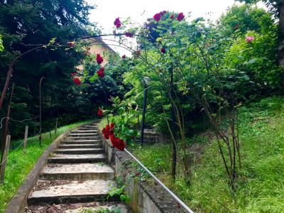 Casa Indipendente in Vendita a Bologna