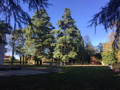 Villa Trifamiliare in Vendita a San Lazzaro di Savena