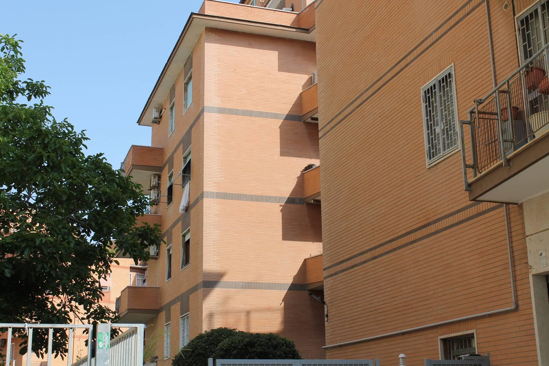 affitto appartamento roma ostia  750 euro  3 locali  75 mq