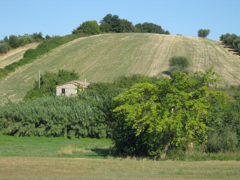 Terreno Agricolo in Vendita a Colonnella