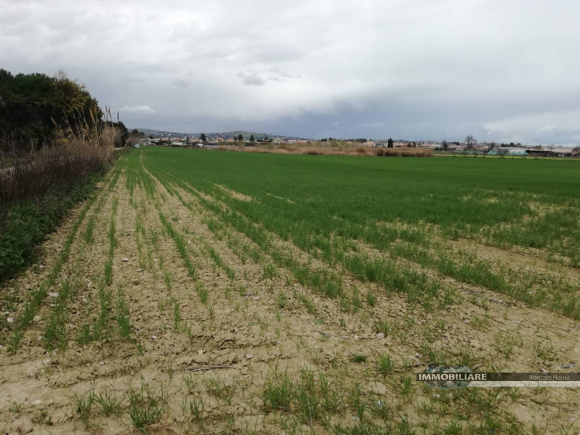 Terreno Agricolo in vendita a Giulianova, 9999 locali, zona Zona: Colleranesco, Trattative riservate | CambioCasa.it