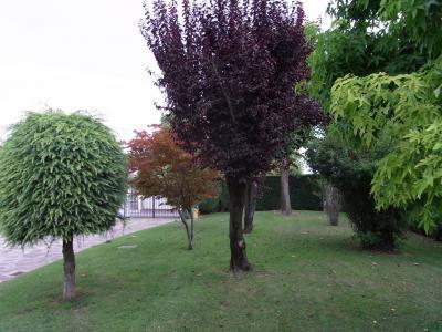 Terreno edificabile residenziale in Vendita a Ponzano Veneto