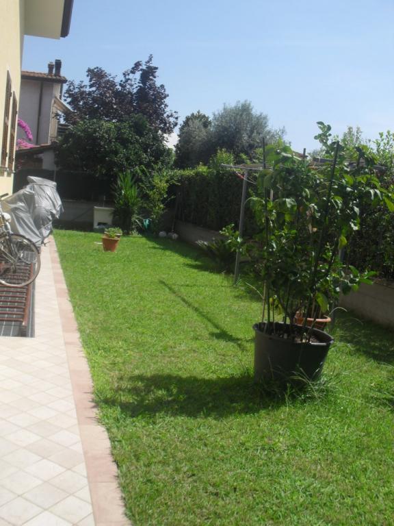 Villa in vendita a Seravezza, 7 locali, zona Zona: Querceta, prezzo € 650.000 | Cambio Casa.it