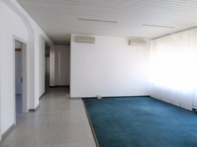 Studio / Office for Rent in Massagno