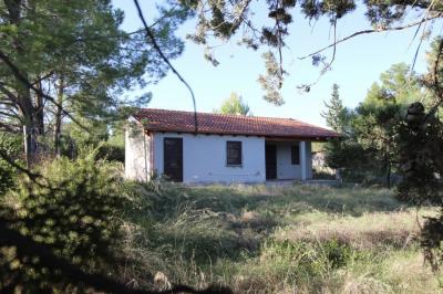 Villa Singola in Vendita a Quartucciu