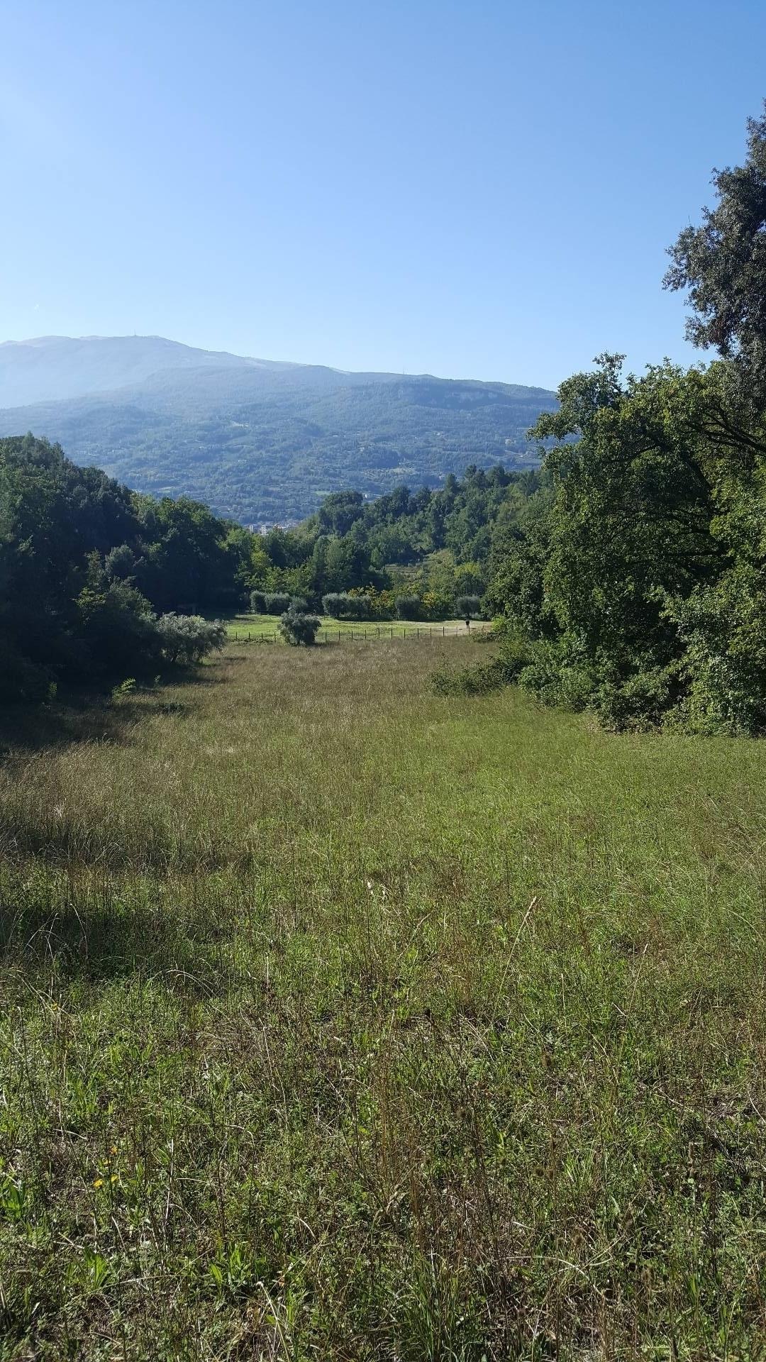 Terreno Agricolo in vendita a Ascoli Piceno, 9999 locali, zona Località: ValleSenzana, prezzo € 80.000 | CambioCasa.it