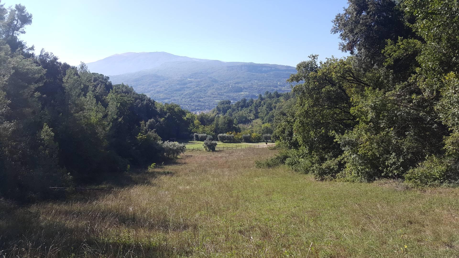 Terreno ASCOLI PICENO vendita  Valle Senzana  Aurea Immobiliare