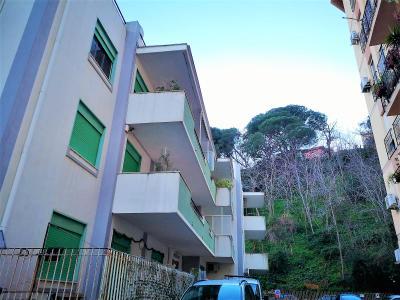 Vai alla scheda: Appartamento Affitto - Messina (ME)   Annunziata bassa - Codice -1-2135