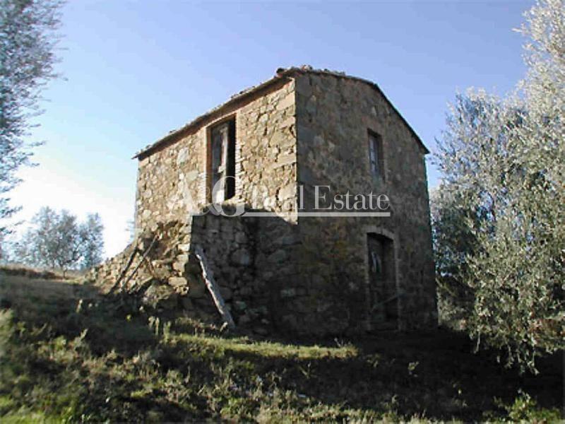 Rustico / Casale in Vendita a Cinigiano