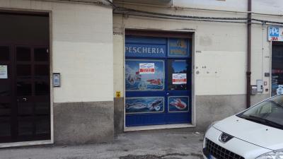 Locale commerciale in Affitto/Vendita a Campobasso