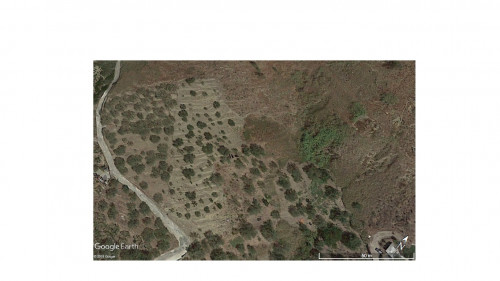 Agricultural Land for Sale to Calatabiano