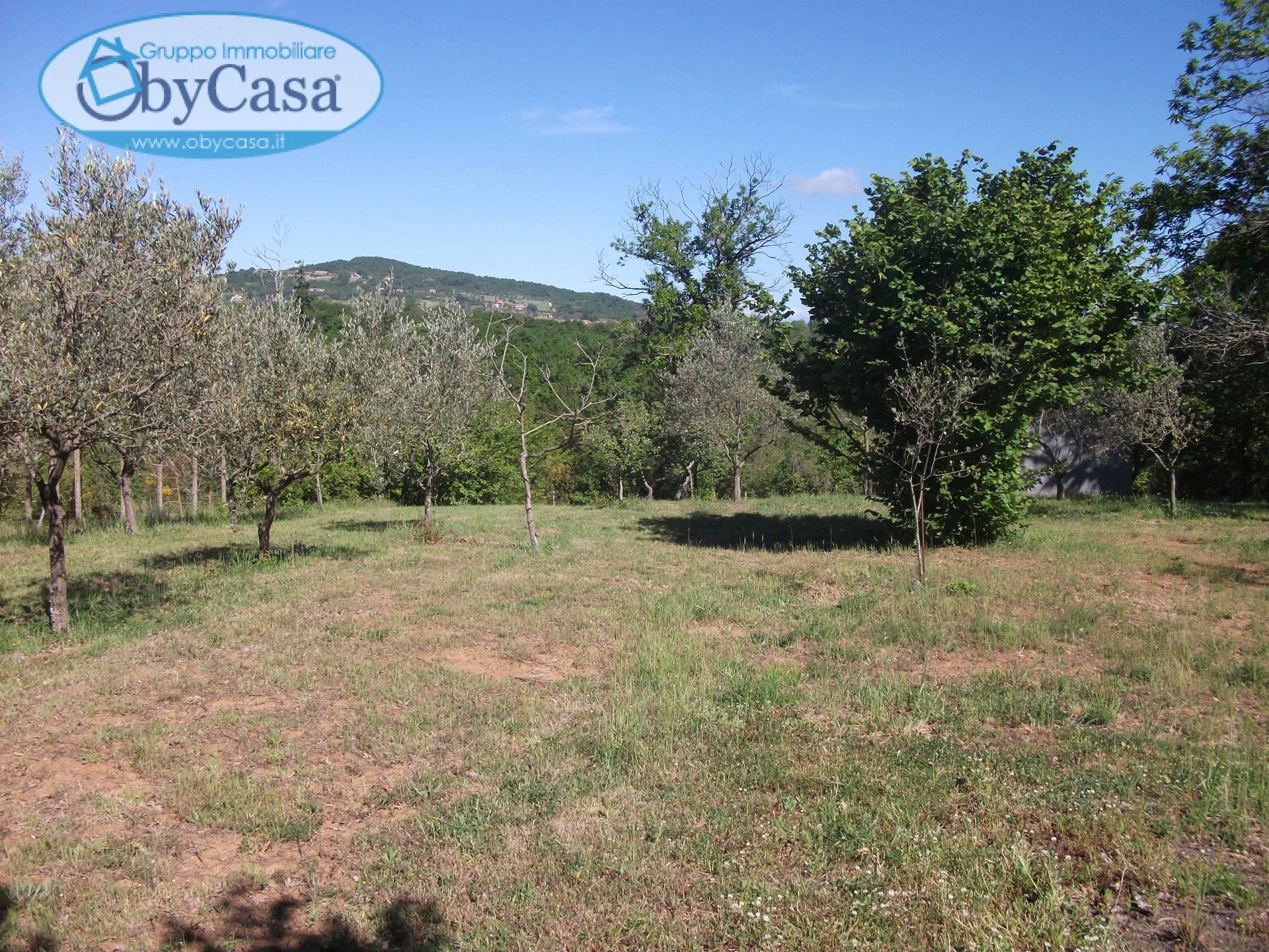 Terreno Agricolo in vendita a Vejano, 9999 locali, prezzo € 34.000 | Cambio Casa.it