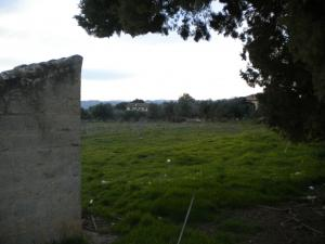 Building plot for Sale<br>in Nuxis