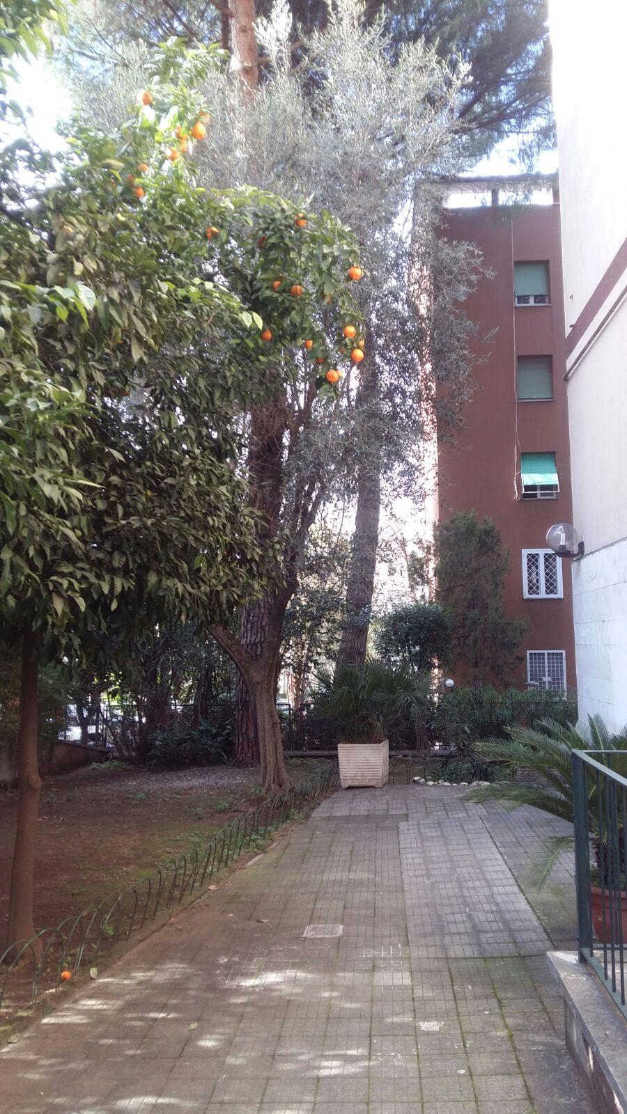 16667 Appartamento in vendita Roma Tufello