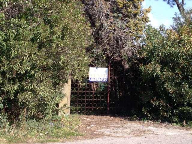 Terreno Edificabile Residenziale in vendita a Nettuno, 9999 locali, zona Località: Frati, prezzo € 55.000 | Cambio Casa.it