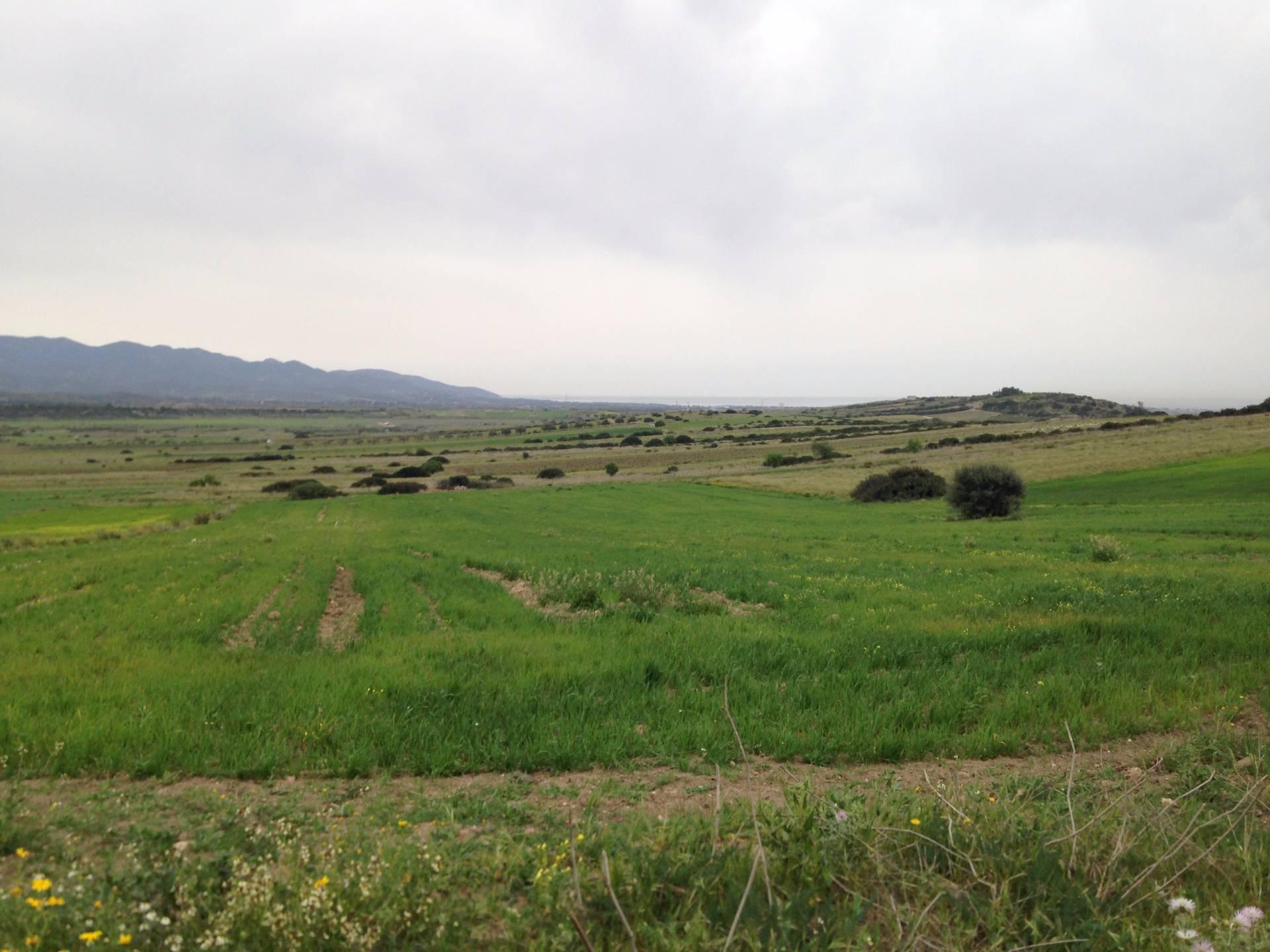 Terreno Agricolo in vendita a Maracalagonis, 9999 locali, prezzo € 14.500 | Cambio Casa.it